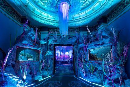 Area 51 Aqua Underwater Decor