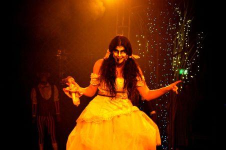 Berserk Woman Circus 2010