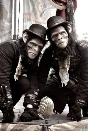 Chimps Twycross Zoo
