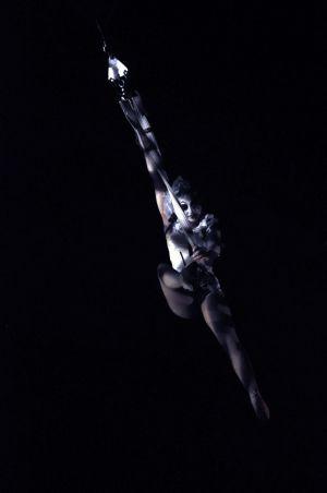 Circus Aerialist Zippos