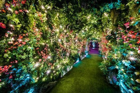 conference floral decor
