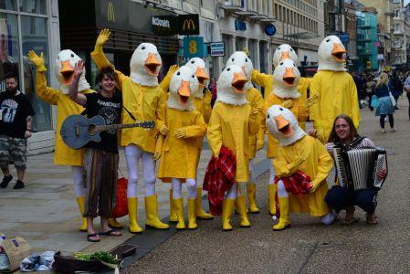 Ducks Campaign