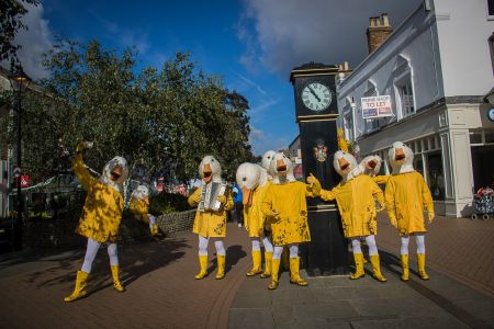 Gaggle Of Duck Costumes