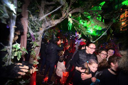 Halloween Party Hamsptead