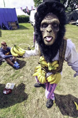 Human Chimp Bananas
