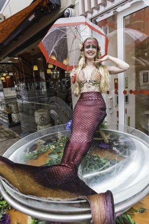 Mermaid Character