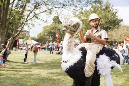 ostrich entertainer