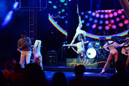 pole dancing show