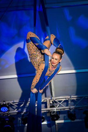 silks performer