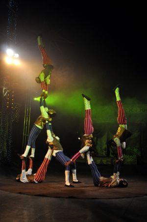 The Chimps Cirque Beserk