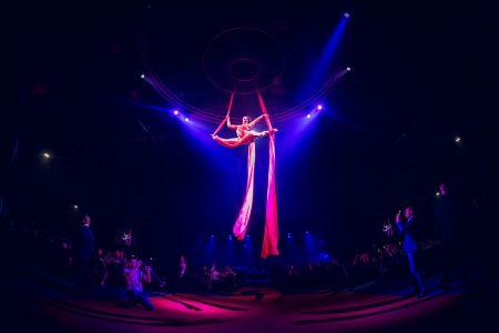 themed aerial silks