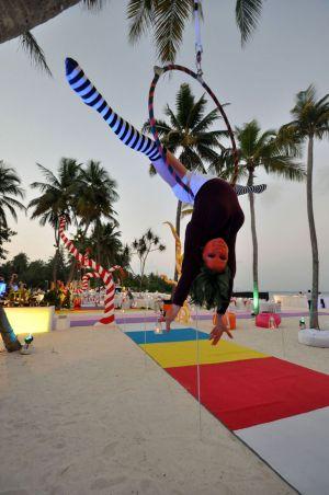 Tropical Island Willy Wonka