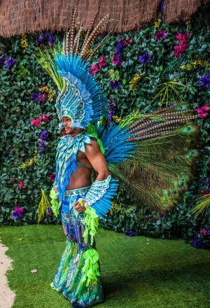 Vibrant Rio Carnival Costume