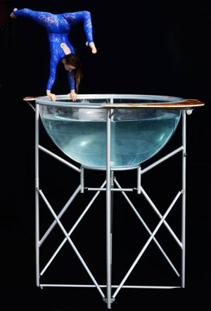 water contortion bowl act